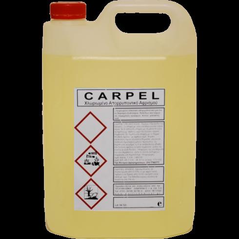 Καθαριστικό υγρό αφρισμού Carpel 4lit Συμπυκνωμένο